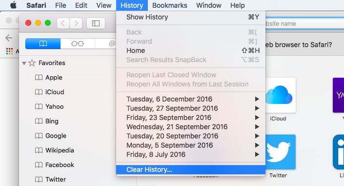 Delete_browser_history_Safari.png